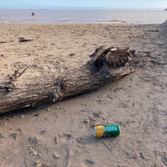 An empty cider can left on the Fitties Beach.